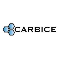 Carbice